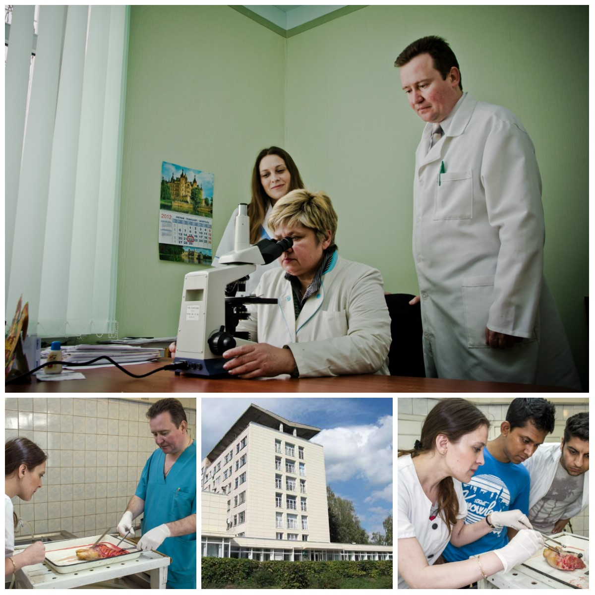Medical institutions (hospitals) of the Sumy region: a selection of sites